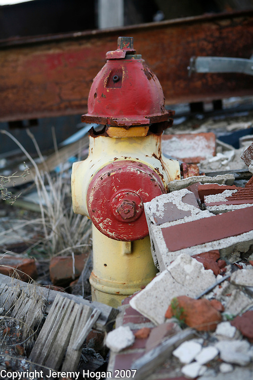 A non-functioning fire hydrant still stands among the ruins of a collapsed building along Commercial Avenue in decaying Cairo, Illinois, a city in decline for decades at the confluence of the Ohio and Mississippi rivers.