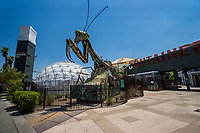 Praying Mantis Sculpture @ Container Park Entrance