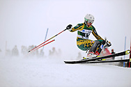 12 MAR 2011: Andreas Adde (12) of the University of Alaska - Anchorage competes in the men's slalom alpine race during the 2011 NCAA Men and Women's Division I Skiing Championship held Stowe Mountain Resort and Trapp Family Lodge in Stowe, VT.  Adde placed 22nd. ©Brett Wilhelm/NCAA Photos