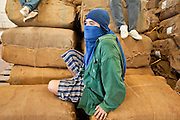 09 APRIL 2010 - DON NANG HANG, NAKHON PHANOM, THAILAND: A warehouse worker takes a break on a burlap bag full of tobacco. Thai tobacco farmers have their crop graded and priced before they sell it at the Thai government tobacco warehouse in Don Nang Hang village in Nakhon Phanom province. The region, in northeast Thailand, is the center of the Thai tobacco industry.  PHOTO BY JACK KURTZ