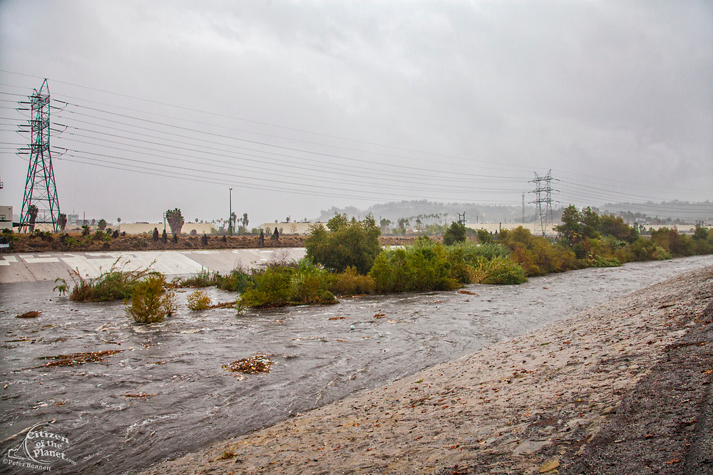 The LA River rises dramatically when a big rainstorm brings much needed water to the Los Angeles area on December 2, 2014. Glendale Narrows, Los Angeles, California, USA