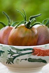Tomato 'Purple Russian' in a bowl