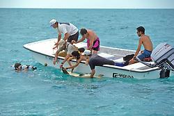 Dr Sam Gruber & Aya Gruber, Working Up Lemon Shark With Peter Filming, Jon, Jean, Rick & Joao Correia