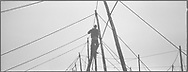 A salmon netter securing poles with ropes on the foreshore at low tide during construction of the fly net on the rocks at Boddin, Angus.<br /> Ref. Catching the Tide 27/00/34a (6th May 2000)<br /> <br /> The once-thriving Scottish salmon netting industry fell into decline in the 1970s and 1980s when the numbers of fish caught reduced due to environmental and economic reasons. In 2016, a three-year ban was imposed by the Scottish Government on the advice of scientists to try to boost dwindling stocks which anglers and conservationists blamed on netsmen.