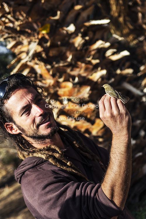 Israel, Sout District, Eliat, The Bird Sanctuary // Israël, District sud, Reserve ornithologique d'Eliat