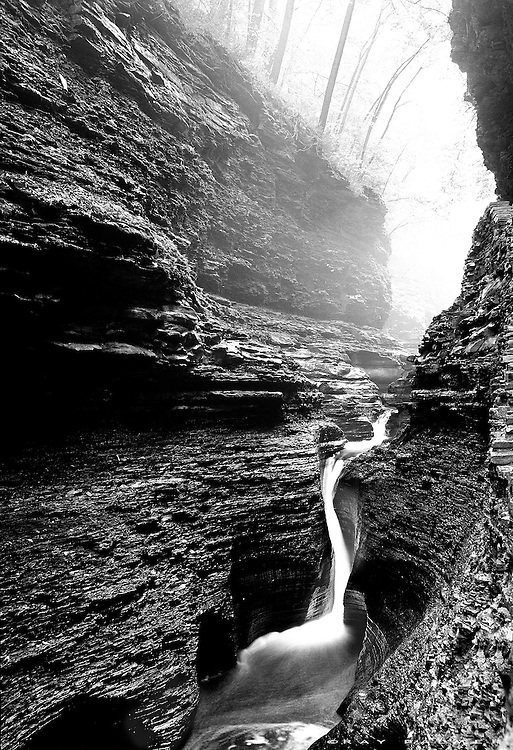 Watkins Glen, Finger Lakes, NY.<br /> A light layer of fog was hanging just below the foliage line and drifting up into the forest, and in the gorge everything was wet from the rain.  The little horsetail of Pluto Falls had just enough water running.  More violent water levels have scoured and polished the bowl of the plunge pool, which reflects in a fine sheen and lights up the recesses.  The shale seemed a good candidate for black and white conversion.