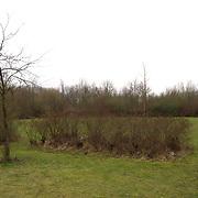 Nieuw aan te leggen Joodse Begraafplaats Kruidenweg Almere