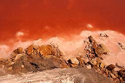 Il complesso produttivo delle saline è situato nel comune italiano di Margherita di Savoia (nome dato dagli abitanti in onore alla regina d'Italia che molto si adoperò nei confronti dei salinieri) nella provincia di Barletta-Andria-Trani in Puglia. Sono le più grandi d'Europa e le seconde nel mondo, in grado di produrre circa la metà del sale marino nazionale (500.000 di tonnellate annue).All'interno dei suoi bacini si sono insediate popolazioni di uccelli migratori e non, divenuti stanziali quali il fenicottero rosa, airone cenerino, garzetta, avocetta, cavaliere d'Italia, chiurlo, chiurlotello, fischione, volpoca..Particolare dell'inizio della formazione del sale per evaporazione .