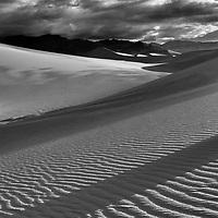 20110325-Mesquite Flats-Photographers