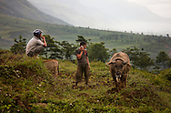 This image clearly illustrates that Vietnam is a country with one foot in Ancient Asia and another stepping toward the modern world. The young rice farmer has been plowing a rice paddy with a buffalo and implements used for centuries. But he is connected to the new world with his cell phone. Robert Dodge, a Washington DC photographer and writer, has been working on his Vietnam Unexpected project since 2005. The project has taken him throughout Vietnam, including Hanoi, Ho Chi Minh City (Saigon), Nha Trang, Mue Nie, Phan Thiet, the Mekong, Sapa, Ninh Binh and the Perfume Pagoda. His images capture scenes and people from women in conical hats planting rice along the Red River in the north to men and women working in the floating markets one the Mekong River and its tributaries. Robert's project also captures the traditions of ancient Asia in the rural markets, Buddhist Monasteries and the celebrations around Tet, the Lunar New Year. Also to be found are images of the emerging modern Vietnam, such as young people eating and drinking and embracing the fashions and music of the west. Robert Dodge, a Washington DC photographer and writer, has been working on his Vietnam Unexpected project since 2005. The project has taken him throughout Vietnam, including Hanoi, Ho Chi Minh City (Saigon), Nha Trang, Mue Nie, Phan Thiet, the Mekong, Sapa, Ninh Binh and the Perfume Pagoda. His images capture scenes and people from women in conical hats planting rice along the Red River in the north to men and women working in the floating markets one the Mekong River and its tributaries. Robert's project also captures the traditions of ancient Asia in the rural markets, Buddhist Monasteries and the celebrations around Tet, the Lunar New Year. Also to be found are images of the emerging modern Vietnam, such as young people eating and drinking and embracing the fashions and music of the West.