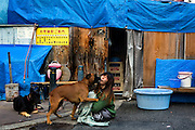 Homeless woman in Kamagasaki.