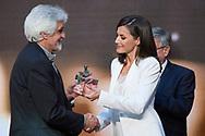 Queen Letizia of Spain attends 'Barco de Vapor and Gran Angular' literature awards at Casa de Correos on April 25, 2019 in Madrid, Spain