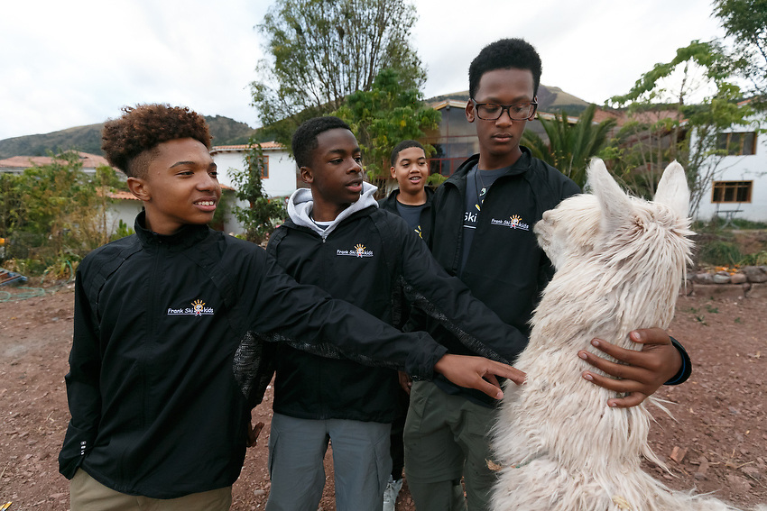 MicahWalthall, 14, left, Parker Smith, 15, and Cameron Cannon,15, touch an alpaca for the first time in their lives.  Bryan Carson,15, looks on from a distance.