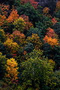Fall colors cling to the trees lining the Susquehanna River Valley