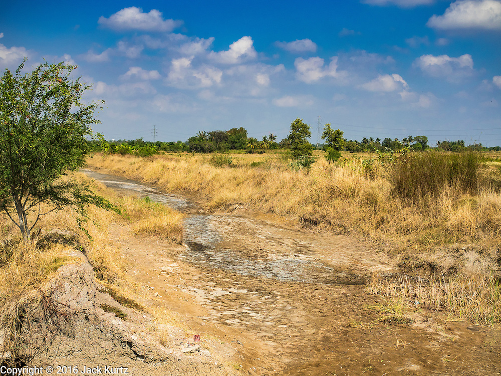 20 JANUARY 2016 - KHAM THALE SO, NAKHON RATCHASIMA, THAILAND: A dried irrigation canal in Nakhon Ratchasima province. At this time of year it should be full but hasn't been used in months because of the drought in Thailand. The drought gripping Thailand was not broken during the rainy season. Because of the Pacific El Nino weather pattern, the rainy season was lighter than usual and many communities in Thailand, especially in northeastern and central Thailand, are still in drought like conditions. Some communities, like Si Liam, in Buri Ram, are running out of water for domestic consumption and residents are traveling miles every day to get water or they buy to from water trucks that occasionally come to the community. The Thai government has told farmers that can't plant a second rice crop (Thai farmers usually get two rice crops a year from their paddies). The government is also considering diverting water from the Mekong and Salaween Rivers, on Thailand's borders to meet domestic needs but Thailand's downstream neighbors object to that because it could leave them short of water.        PHOTO BY JACK KURTZ