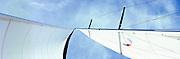 Upward view of mast & sails