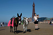 Mothers try to get their toddlers to ride one of Blackpools famous donkeys, one of the beachs most popular attractions, with the world famous Blackpool Tower in the background as temperatures in the country are expected to soar this week on 7th September, 2021 in Blackpool, United Kingdom. Temperatures in the UK are predicted to soar to highs of 29 degrees celsius, coinciding with a rise in daycation and staycation domestic tourism in the country as a result of Covid-19 precautions that make foreign travel increasingly costly and difficult.
