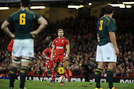 Leigh Halfpenny of Wales prepares to kick a penalty.Autumn International rugby, 2013 Dove men series, Wales v South Africa at the Millennium Stadium in Cardiff,  South Wales on Saturday 9th November 2013. pic by Andrew Orchard, Andrew Orchard sports photography,