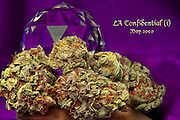 LA Confidential, nugphotos, nug photos, nug photo Cannabis, Cannabis photos, Fine Art Cannabis, Marijuana, Marijuana photos, Fine Art Marijuana, Nugs, Nug, Nug Porn, Buds, Hash, Hashish, Honey Oil