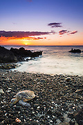 Hawaiian green sea turtle on a lava beach at sunset, Kohala Coast, The Big Island, Hawaii USA