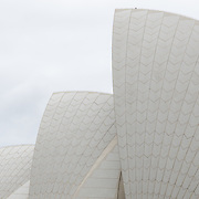 Close crop of the distinctive sails of the roof of the Sydney Opera House, situated prominently in Sydney Harbour, Sydney, Australia.