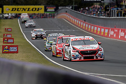 October 8, 2018 - Bathurst, NSW, U.S. - BATHURST, NSW - OCTOBER 07: Garth Tander / Chris Pither in the Wilson Security Racing GRM Holden Commodore head up pit straight at the Supercheap Auto Bathurst 1000 V8 Supercar Race at Mount Panorama Circuit in Bathurst, Australia on October 07, 2018 (Photo by Speed Media/Icon Sportswire) (Credit Image: © Speed Media/Icon SMI via ZUMA Press)