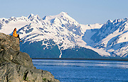 Alaska. Hiker (MR) enjoys the beautiful scenery of the Turnagain Arm and Chugach Mountains.