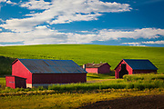 Farm buildings in the agricultural Palouse area of eastern Washington state.