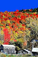 Berkshires Fall Foliage Tour