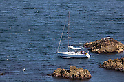 A yacht passes through the Collough Rocks, near the cliffs on the south, unsheltered side of the Great Saltee, the larger of the Saltee Islands, off the coast of Co. Wexford, Ireland.