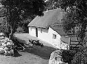 01/02/1957<br /> 02/01/1957<br /> 01 February 1957<br /> View of cottage near Arklow Head, Co. Wicklow.