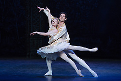 "© Licensed to London News Pictures. 10/12/2014. London, England. Dancing: Alina Cojocaru and Alejandro Virelles. Dress rehearsal for the ballet ""The Nutcracker"" at the London Coliseum. Set to music by Pyotr Ilyich Tchaikovsky, the traditional Christmas ballet is choreographed by Wayne Eagling based on a concept by Toer von Schayk and Wayne Eagling. The English National Ballet Philharmonic orchestra accompanies dancers from the English National Ballet and Students from the English National Ballet School. Children performers are from the Tring Park School for the Performing Arts. The ballet runs at the London Coliseum from 11 December 2014 to 4 January 2015.  With Alina Cojocaru as Clara, Max Westwell as Nutcracker, Alejandro Virellles as Nephew, James Streeter as Mouse King and Fabian Reimair as Drosselmeyer. Photo credit: Bettina Strenske/LNP"