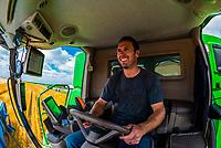 Matt Schields driving a combine during the wheat harvest, Schields & Sons Farming, Goodland, Kansas USA.