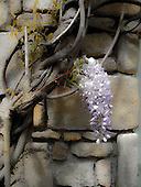 20140427 PW. Auray, Brittany, FRANCE