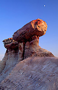A petrified redwood log sits perched on top of Blue Mesa in Petrified Forest National Park, Arizona.