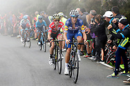 Enric Mas (ESP, QuickStep Floors) during the 73th Edition of the 2018 Tour of Spain, Vuelta Espana 2018, Stage 15 cycling race, 15th stage Ribera de Arriba - Lagos de Covadonga 178,2 km on September 9, 2018 in Spain - Photo Luis Angel Gomez/ BettiniPhoto / ProSportsImages / DPPI