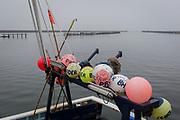 Fishing buoys are attached to the rear of a boat moored in the harbour, with a Northumbrian North Sea town harbour in the distance, on 25th September 2017, in Amble, Northumberland, England.