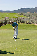 Vertical of golfer putting