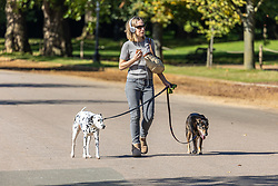Licensed to London News Pictures. 06/10/2021. London, UK. After yesterday's torrential rains and flooding, A dog walker enjoys the sunshine in Hyde Park, London today as weather forecasters predict a mild few days ahead with highs of 20c. Photo credit: Alex Lentati/LNP