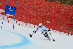 Linnea Ottoson Eide, Women's Giant Slalom at the 2014 Sochi Winter Paralympic Games, Russia