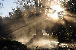 © Licensed to London News Pictures. 06/11/2014<br /> Early morning sun breaking between the trees over the River Cray at Foots Cray Meadows.<br /> Freezing cold weather and a cold mist over the River Cray this morning at Foots Cray Meadows,Sidcup,Kent.<br /> (Byline:Grant Falvey/LNP)