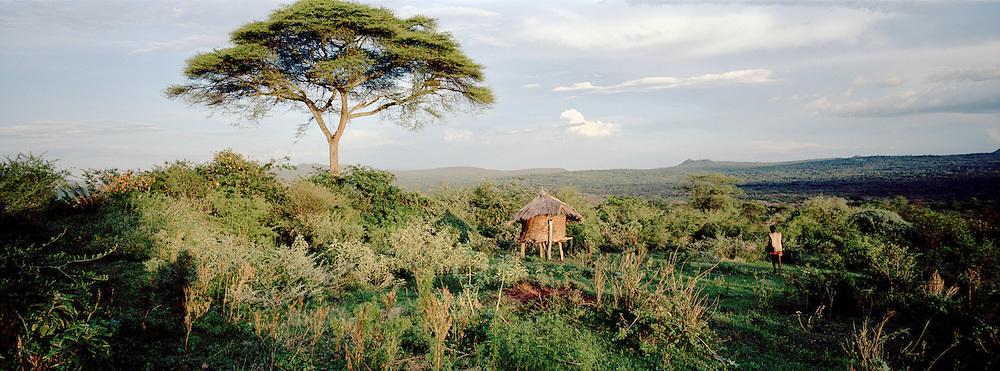 Panoramic view of farmland with a storehouse, near Lalibela, Ethiopia