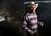 """Crafting mezcal is what Romulo """"Modesto"""" Cruz lives for, and it's been his life for 53 years. The 67-year-old man of Santa Ana de Miahuatlan, Oaxaca, Mexico, makes one of the most popular mixes of mezcal in his small town, selling hundreds of liters of the drink in any given week. """"We all have professions, but I live from this,"""" Cruz said. """"I was working a lot, suffering a lot, so I started working with maguey to rise from it."""""""
