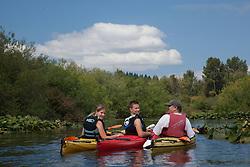 North America, United States, Washington, Bellevue,  kayaking  in Mercer Slough Nature Park.  MR