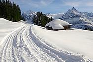 Toboggan run in the winter Snow in the mountains near Grindelwald First - Swiss Alps - Switzerland