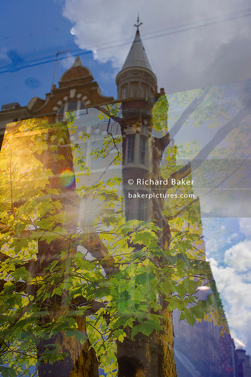 Tall central Covent Garden area London architecture and illustration of tree in a forest.