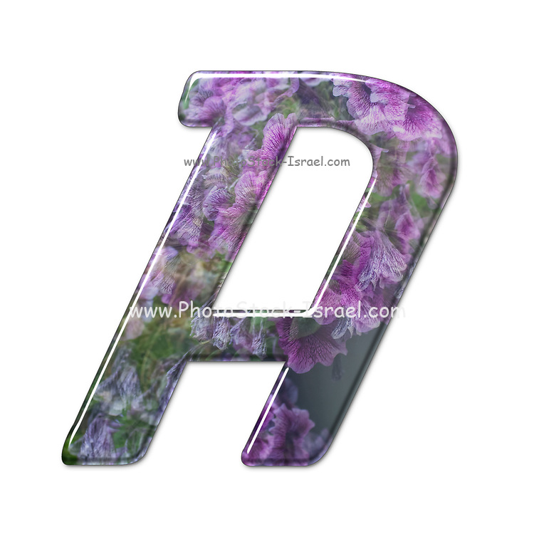 The Capitol Letter A Part of a set of letters, Numbers and symbols of 3D Alphabet made with a floral image on white background