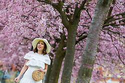 March 22, 2019 - London, UK, UK - London, UK. A woman poses in front of cherry blossoms in a north London park. (Credit Image: © Dinendra Haria/London News Pictures via ZUMA Wire)