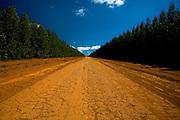 07 de Agosto de 2007.<br /> <br /> Projeto Beira de Estrada<br /> <br /> Rota 05 - Vale do Jequitinhonha e Mucuri<br /> <br /> <br /> FOTO: LEO DRUMOND- AGENCIA NITRO