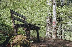 THEMENBILD - eine Holzbank in einem Birkenwald. Auf einem Baumstamm ist die rot weiß rote Flagge als Wegmarkierung aufgezeichnet, aufgenommen am 30. April 2020, Kaprun, Österreich // a wooden bench in a birch forest. On a tree trunk the red and white red flag is recorded as a trail marker on 2020/04/30, Kaprun, Austria. EXPA Pictures © 2020, PhotoCredit: EXPA/ Stefanie Oberhauser
